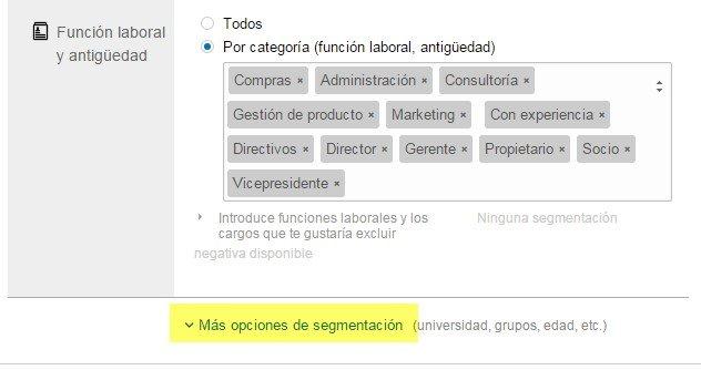funcion laboral y opciones de segmentacion LinkedIn Ads