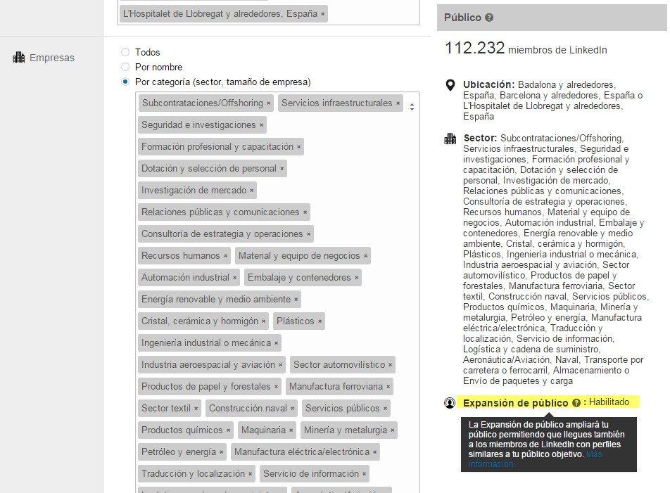 segmentacion LinkedIn ads